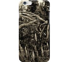 Old Wooden Horse iPhone Case/Skin