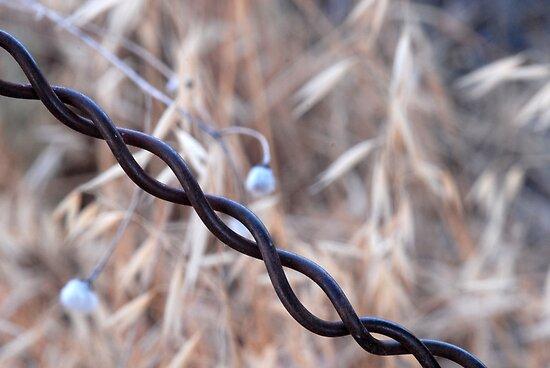 Braided Wire by Karen Zimmerman