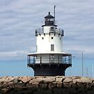 Spring Point Ledge Lighthouse. by William Brennan