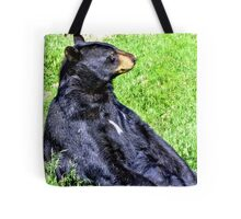 Brown Bear sitting on a hill Tote Bag