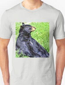 Brown Bear sitting on a hill T-Shirt