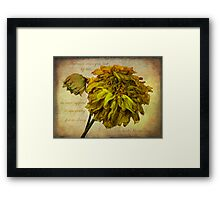 Autumn wins you best..... Framed Print