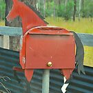 Horsey Box # 5 by Penny Smith