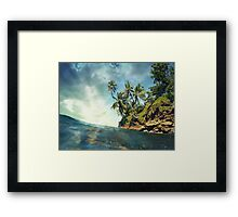 Coconut trees with sunlight viewed from sea surface Framed Print