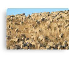 Woolen Landscape Canvas Print