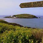 Devon: Burgh Island by Rob Parsons