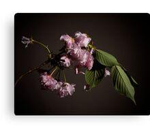 Fleur sur Branche Canvas Print