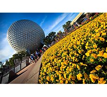 EPCOT Flower Bed Photographic Print