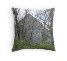 The Old Barn Sits Empty Throw Pillow