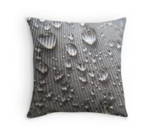 Waterproof #2 Throw Pillow