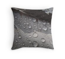 Waterproof #3 Throw Pillow