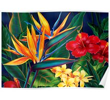 Tropical Paradise Hawaiian Birds of Paradise Illustration Poster