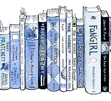 Bookshelf  by redgoldsparks