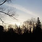 Streaks of Clouds in the dawn sky by NiftyGaloot