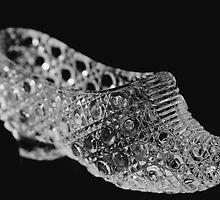 The Glass Slipper by Rita Ballantyne