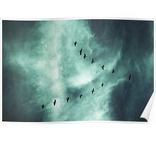 Beautiful Sky with Birds Poster