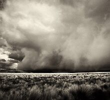 Thunderstorm Is Coming by pther