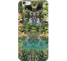 Find The Faces iPhone Case/Skin
