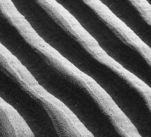Sand by Manuel Gonçalves