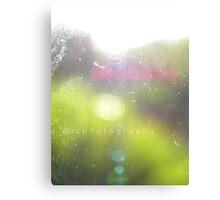 camera lens. Canvas Print