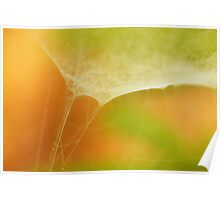 Spider Web..with abstract feel Poster