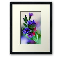 The Magnificent Mrs. Moon -- Pulmonaria Framed Print