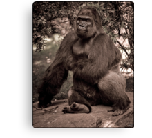 Just A Cuddly Guy In A Pensive Mood Canvas Print