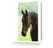 Sincerity Greeting Card