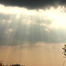 Sunbeams n Storm Clouds by Daisy-May