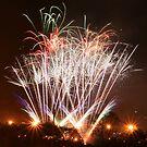 CFA Fireworks Convention #3 by Janet Rymal