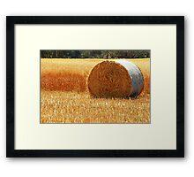 Hay Roll Framed Print