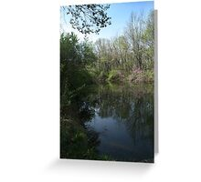 Quiet Reflection... Greeting Card