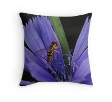 Chicory Chow Down Throw Pillow