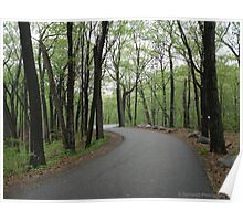 Pathway to Home Poster
