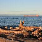 Freighter Passing by Whitefish Point by Megan Noble