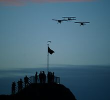 Anzac Day Dawn by L Spittall