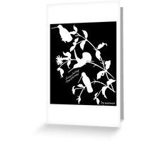 White long-billed starthroat  Greeting Card