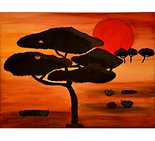 African sunset painting Photographic Print