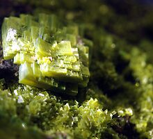 Crystal Moss by RavenMunro