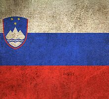 Old and Worn Distressed Vintage Flag of Slovenia by Jeff Bartels
