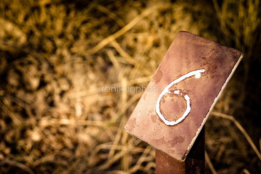 Number 6 Sign by rbnikonphoto