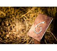Number 6 Sign Photographic Print