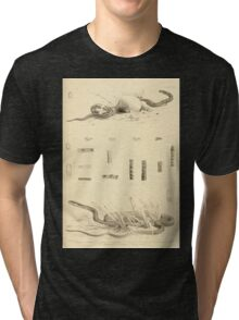 The Reptiles of British India by Albert C L G Gunther 1864 0517 Snakes Tri-blend T-Shirt