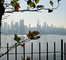NYC Skyline  by MaureenS