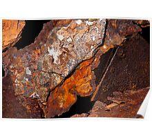 Aristea wreck rust - West Coast, South Africa Poster