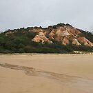 Fraser Island No. 1 by DanikaL
