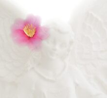 Camellia wings by Plum