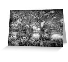 ReachingTrees Greeting Card