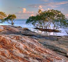 The Shoreline by Terry Everson