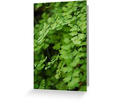 The Simple Fern Greeting Card
